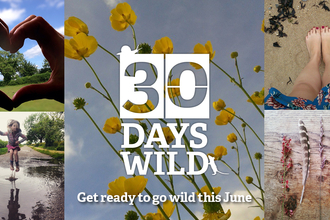 30 Days Wild Campaign Graphic
