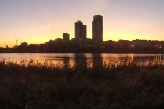 Woodberry at sunrise