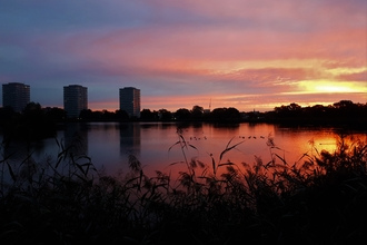 Picturesque sunrise at Woodberry