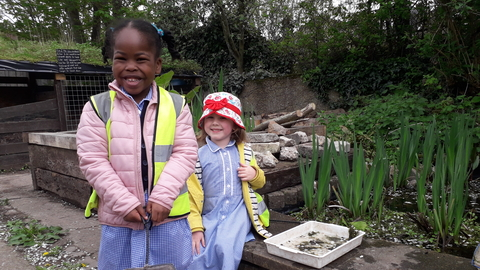 Heber Primary School at Centre for Wildlife Gardening