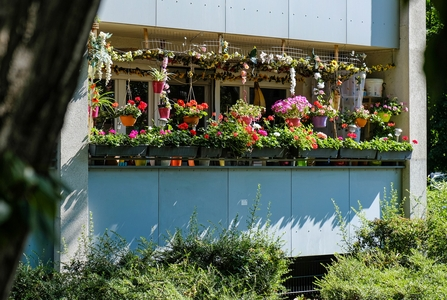 A balcony filled with window boxes and hanging baskets