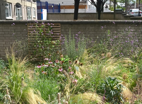 Urban garden, Lambeth
